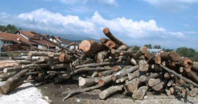 SREDNJA BOSNA: Ove godine otvaranje moderne šumarije u Novom Travniku, Travniku i Vitezu
